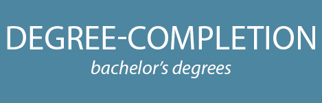 Degree-Completion Programs (bachelor's degrees)
